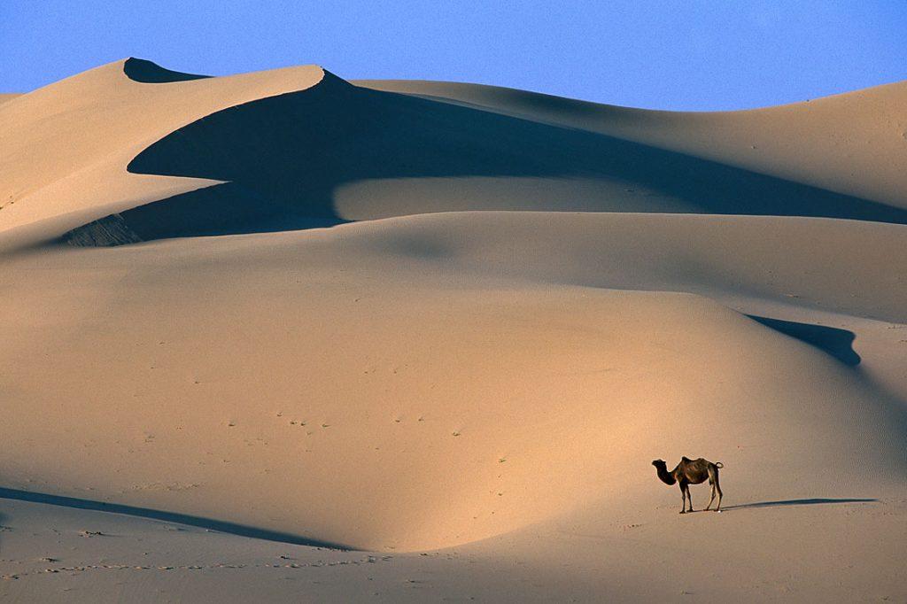 gobi-desierto