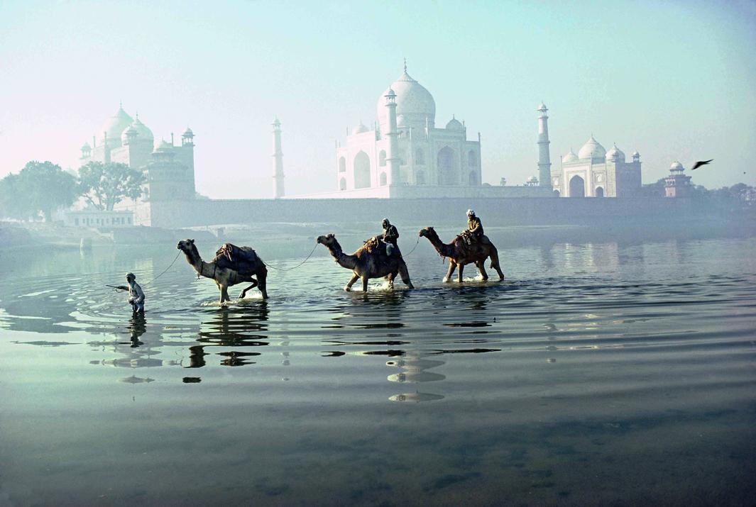 Agra (Uttar Pradesh, Inde), Taj Mahal (mausolÈe ÈdifiÈ entre 1632 et 1653 par líempereur Chah Jahan ‡ la mÈmoire de son Èpouse favorite Mumtaz Mahal). Vue sur la Yamuna avec une caravane de chameaux et le Taj-Mahal ‡ líarriËre plan. Photographie, dÈcembre 1981.