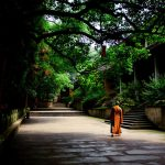 Buddhist Monastic Life and the Vinaya. Daily life -2-